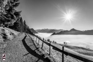 Nebelmeer Schweiz