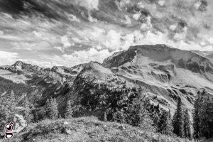 Naturfotografie Fineart